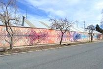 PHO-GrowHaus Mural.jpg